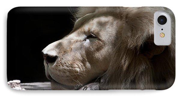 A Lions Portrait Phone Case by Ralf Kaiser