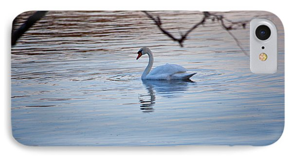 A Lonely Swans Late Afternoon Phone Case by Karol Livote