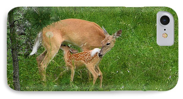 A Mother's Love - Doe And Fawn Phone Case by Christine Till