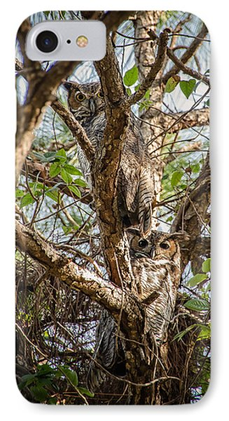 A Pair Of Horned Owls IPhone Case