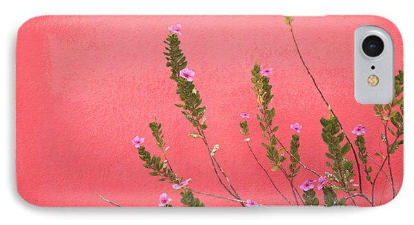 A Pink Flowering Plant Growing Beside A Phone Case by Stuart Westmorland