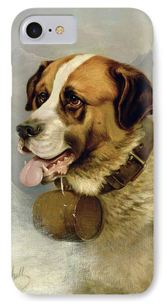 A Portrait Of A St. Bernard IPhone Case by James E Bourhill