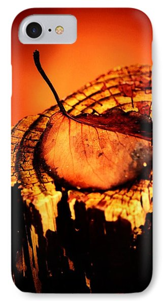 IPhone Case featuring the photograph A Pose For Fall by Jessica Shelton