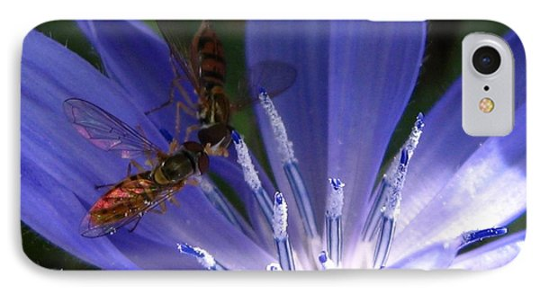 IPhone Case featuring the photograph A Quiet Moment On The Chicory by J McCombie