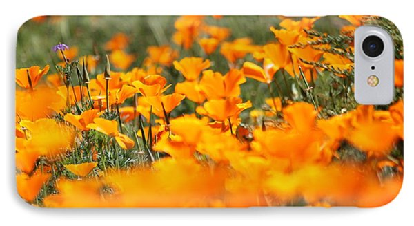 A River Of Poppies  IPhone Case