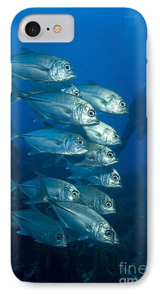 A School Of Bigeye Trevally, Papua New Phone Case by Steve Jones