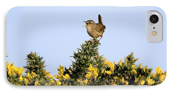 A Singing Wren Phone Case by Duncan Shaw