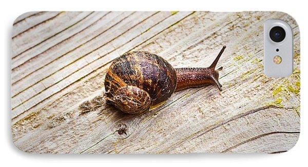 A Snail Sliding Across A Wooden Surface Phone Case by Tom Gowanlock