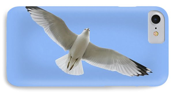 A Soaring Dove IPhone Case