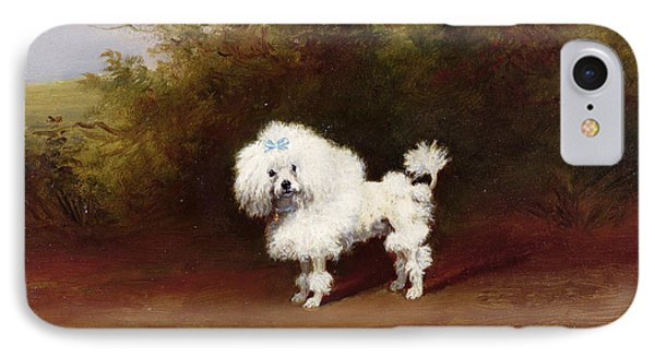 A Toy Poodle In A Landscape  IPhone Case by Frederick French