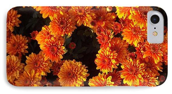 IPhone Case featuring the photograph Ablaze by Elizabeth Sullivan