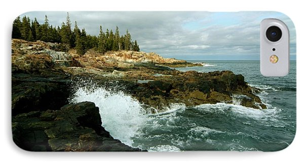IPhone Case featuring the photograph Acadia On The Shore by Rick Frost