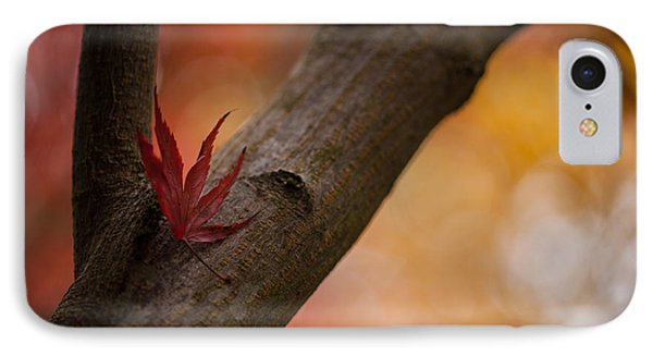 Acer Soliloquy IPhone Case by Mike Reid
