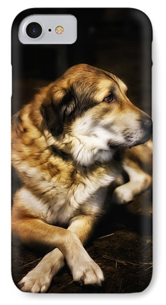 Adam - The Loving Dog IPhone Case