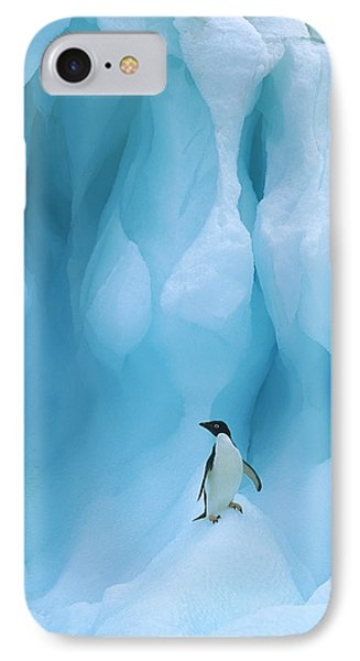 Adelie Penguin Pygoscelis Adeliae Phone Case by Colin Monteath