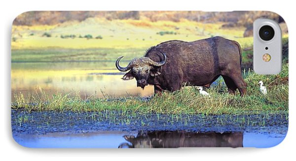 African Cape Buffalo, Photographed At Phone Case by John Pitcher