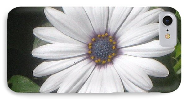African Daisy Glow IPhone Case