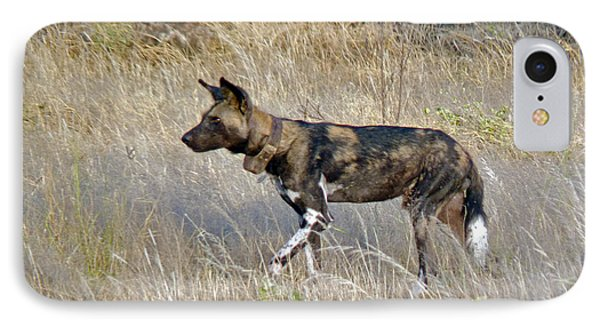 African Wild Dog Phone Case by Tony Murtagh