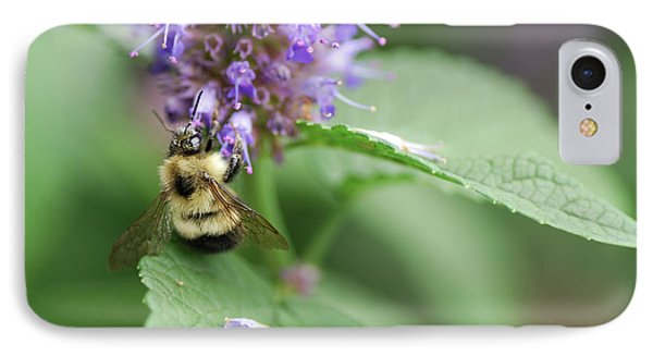 Honeybee iPhone 7 Case - Afternoon Snack by Susan Capuano