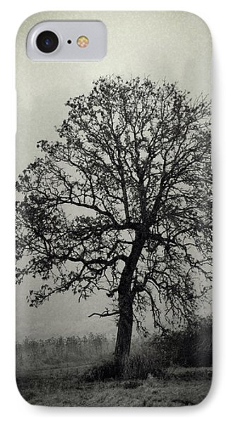 Age Old Tree IPhone Case by Steve McKinzie
