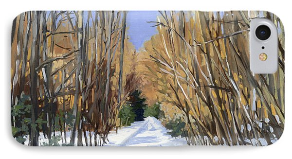 Airline Trail In Winter IPhone Case by Alecia Underhill