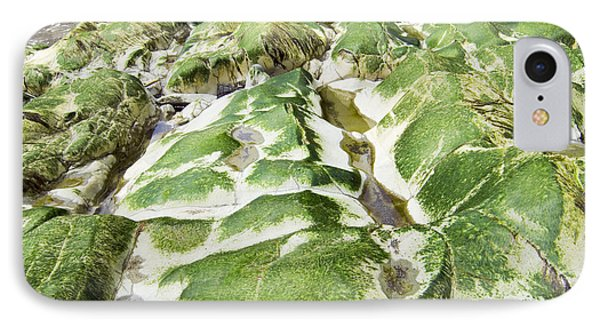 Algae Covered Rocks IPhone Case by Georgette Douwma