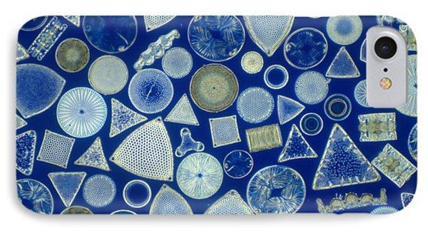 Algae, Fossil Diatoms, Lm Phone Case by M. I. Walker