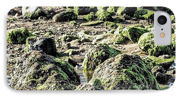 Algae Rocks Phone Case by Arya Swadharma