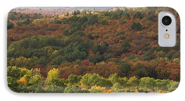 Algonquin In Autumn Phone Case by Cale Best