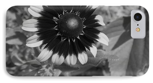 IPhone Case featuring the photograph All Dressed Up And No Place To Go by Elizabeth Sullivan