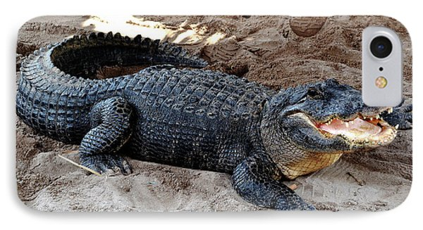 IPhone Case featuring the photograph Alligator At The Everglades by Pravine Chester
