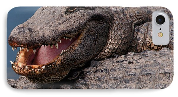 IPhone Case featuring the photograph Alligator Smile by Art Whitton