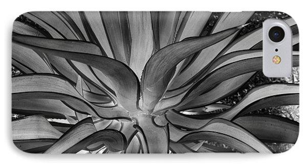 Aloe Black And White Phone Case by Rebecca Margraf