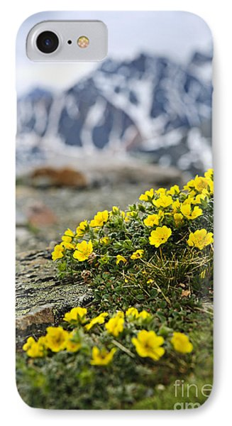 Alpine Meadow  Phone Case by Elena Elisseeva