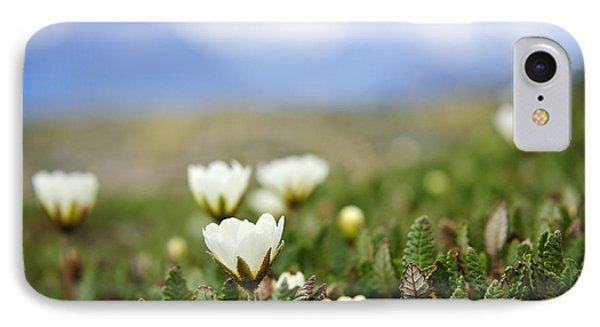 Alpine Meadow In Jasper National Park Phone Case by Elena Elisseeva