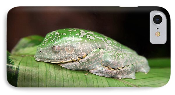 Amazon Leaf Frog Phone Case by Brad Granger