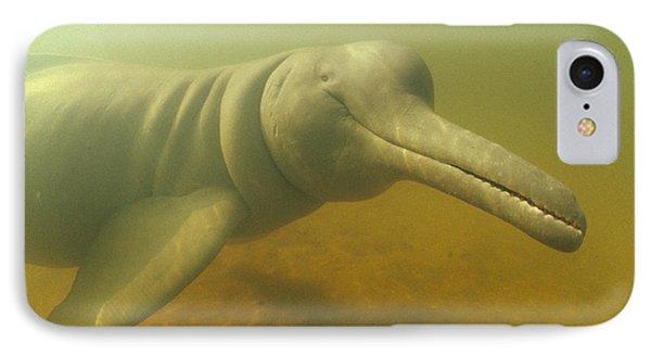 Amazon River Dolphin Portrait Brazil Phone Case by Flip Nicklin