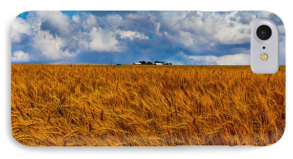 Amber Waves Of Grain IPhone Case by Doug Long