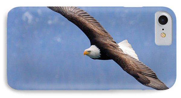 IPhone Case featuring the photograph American Bald Eagle by Doug Lloyd