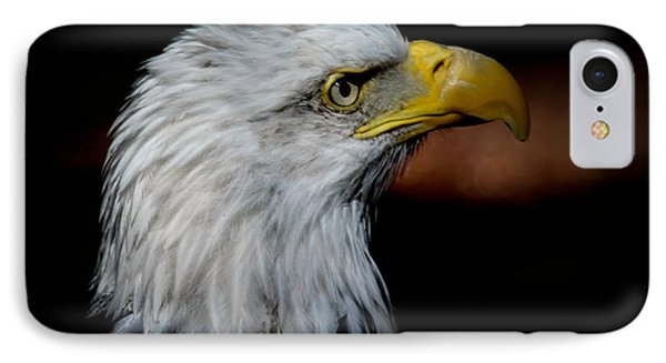 American Bald Eagle IPhone Case by Steve McKinzie