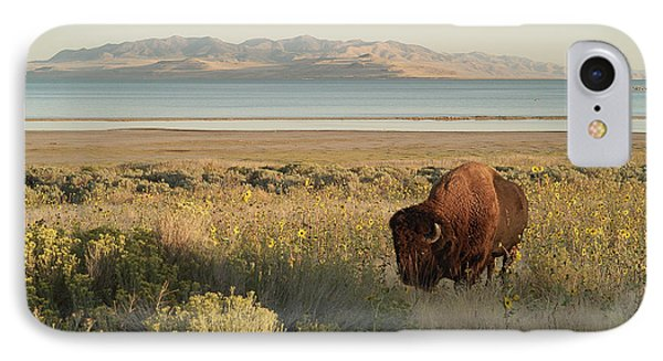 IPhone Case featuring the photograph American Bison Antelope Island Utah by Doug Herr