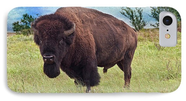 American Bison Phone Case by Tamyra Ayles