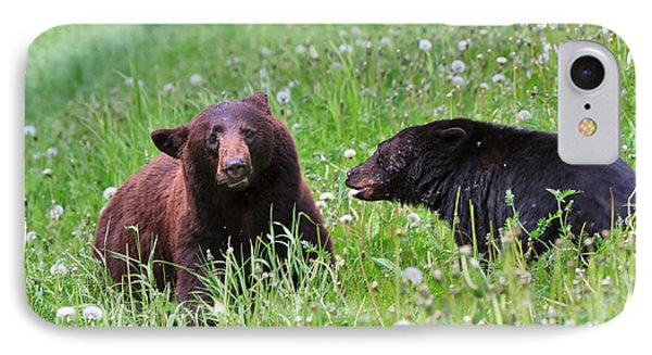 American Black Bear With Cub Phone Case by Louise Heusinkveld