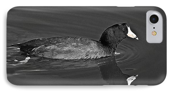 American Coot Phone Case by Bob and Nadine Johnston
