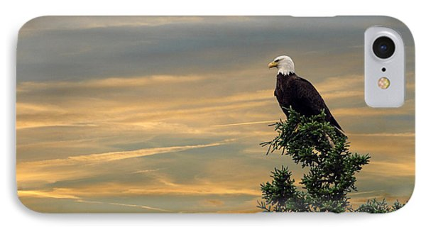 IPhone Case featuring the photograph American Eagle Sunset by Dan Friend