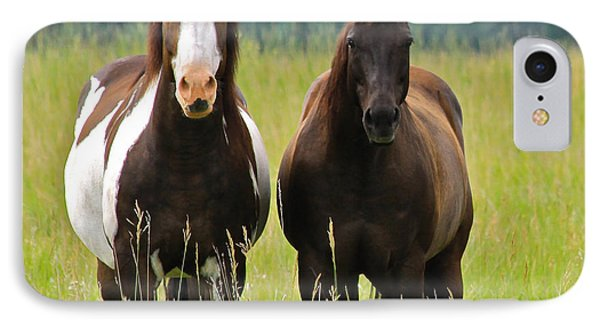 American Paint Stallion And Mare IPhone Case by Karon Melillo DeVega