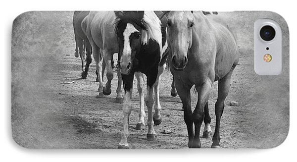 American Quarter Horse Herd In Black And White IPhone Case