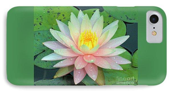 American Water Lilies Nine IPhone Case by J Jaiam