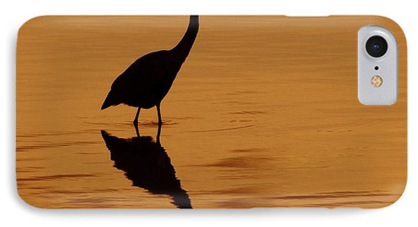 An Early Morning Dip Phone Case by Tony Beck