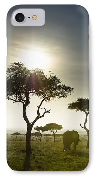 An Elephant Walks Among The Trees Kenya Phone Case by David DuChemin